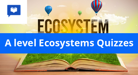 A level Ecosystems Quizzes