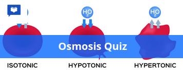 Osmosis quiz
